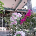 Little Rose Inn