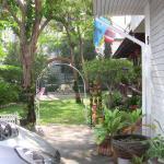 Blick auf den Garten -