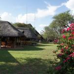 Foto de Kalahari Bush Breaks