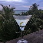perfect martini by Alexandra