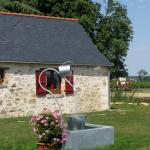 Le Domaine des Gauliers au coeur du vignoble du Layon