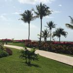 Foto de Moon Palace Golf Course