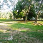 Goldburn River Tourist Park Photo