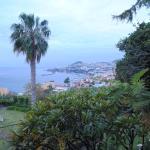 Foto di Quinta Sao Goncalo