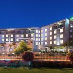 牙買加京斯敦庭院飯店