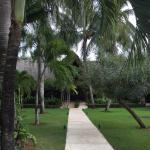 Landscape - Zoetry Agua Punta Cana Photo