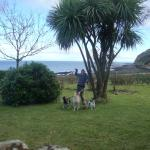 Foto de Kintyre Cottages