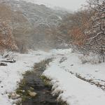 Snow falling on the natural creek that feeds the hot springs