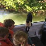 Jungle Land Panama Floating Lodge Foto