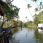 Ride through the backwaters