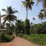 Village road just outside Breeze Backwaters