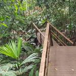 Delicious food, lots of steps to bungalow #17!, various fauna and flora of the rainforest...abso