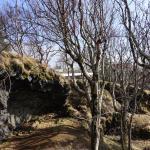 Hellisgerdi Park Foto