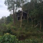 Landscape - Zen Namkhan Boutique Resort Photo