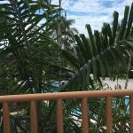 CocoLaPalm Resort Photo