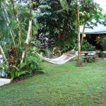 A view of the pool, hammock and dining/lounging/Internet area.