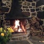 The open log fire