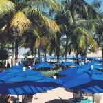 Pool - South Seas Island Resort Photo