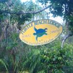 Turtle Beach Lodge Foto