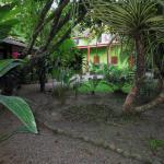 Photo de The Toucan Stay Inn