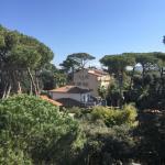 Photo of Hotel La Primula