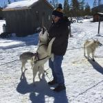 Dog Sled Rides of Winter Park