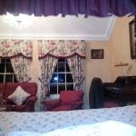 Foto de Barberstown Castle
