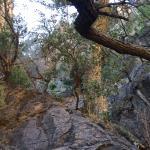 soledad canyon