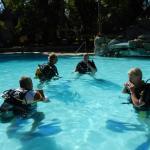 Foto de Baracuda Diving