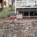 Foto de Naturland Forest Resort