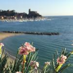 Hotel Florida Lerici Photo