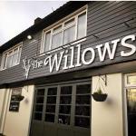 Foto di The Willows