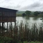 Photo de Rain Farm Game and Lodge