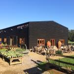 Staplehurst Nurseries & Frankie's Farmshop