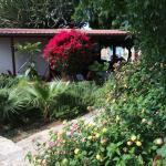 Compact, maar wat een fantastische tuin in het voorjaar!