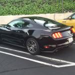 Here's my sweet Mustang rental complete with the Pony Package. Photo is to show the parking lot