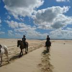 Papiesfontein Beach Horse Rides Foto