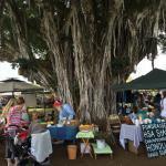 Hawi Farmers Market