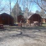 Cabins available, too