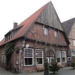 Cafe Schwan
