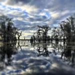 Photo de Lake Martin