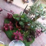 Samma trevliga innergård