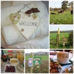 Belvoir Bed and Breakfast