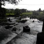 Waikelo Sawah Waterfall - air mengalir mengairi sawah sawah