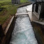 Waikelo Sawah Waterfall - megaliri sawah sawah di sekitarnya