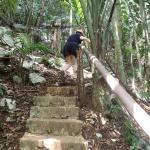 Zipline trail