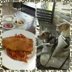 Pet friendly & fish and chips with sweet potato fries