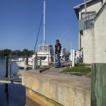 Dolphins, Fu-Lyn-Sue charter boat.
