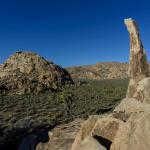 Aiguille de Joshua Tree (aka The Finger of Hercules)