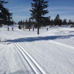 Ski area - 350km of groomed trails